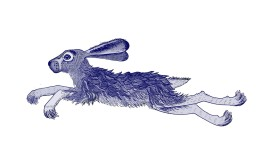 our hare reversed